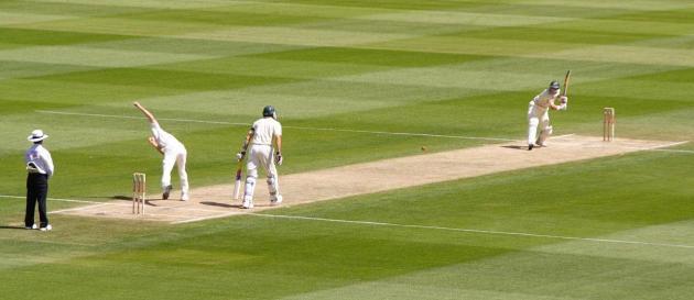 Cricket Sample Photo